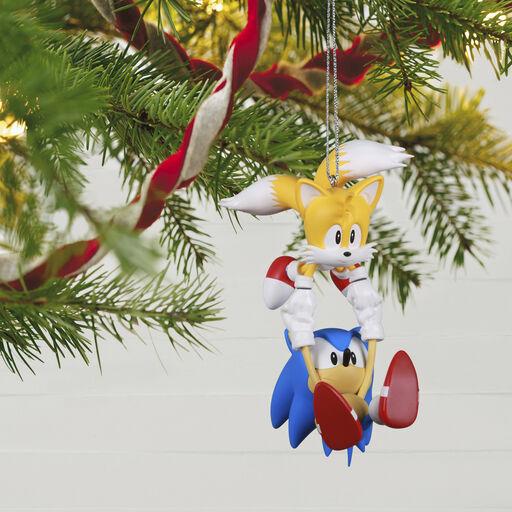 Hedgehog Christmas Ornament 2021 Fphbuhggke6gjm