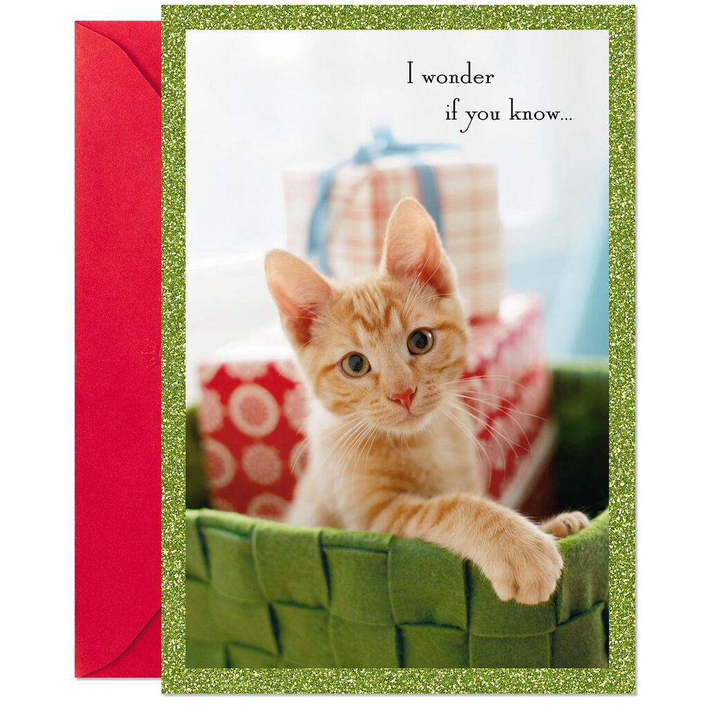 Kitten Christmas.Heart Happiness Orange Tabby Kitten Christmas Card