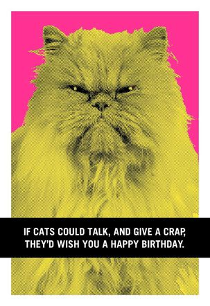 If Cats Could Talk Funny Birthday Card