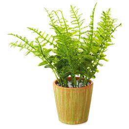 Faux Fern Plant Garden Decoration, , large