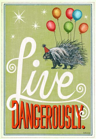 Live dangerously birthday card greeting cards hallmark live dangerously birthday card m4hsunfo