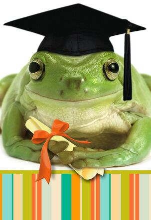 You Did it! Frog Graduation Card