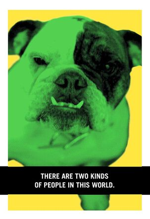 Bulldog Bully Funny Birthday Card