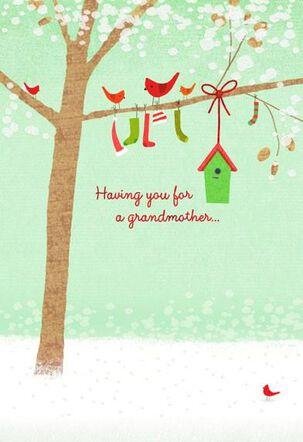 Grandmother Gift Christmas Card
