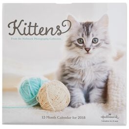 Sweet Kittens 2018 Wall Calendar, 12-Month, , large