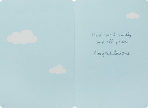 Elephant With Balloons New Baby Boy Congratulations Card,