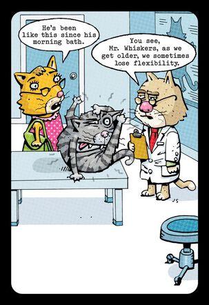 Lost Flexibility Cat Funny Birthday Card