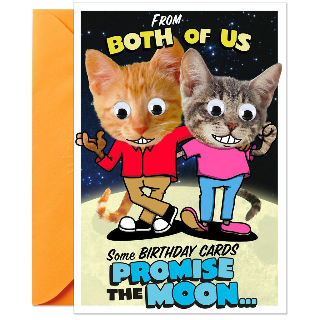 Cheeky Cats Pop Up Birthday Card From Both