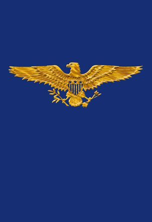 Golden Eagle Veterans Day Card