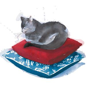 Pampered Cat on Pillows Blank Card