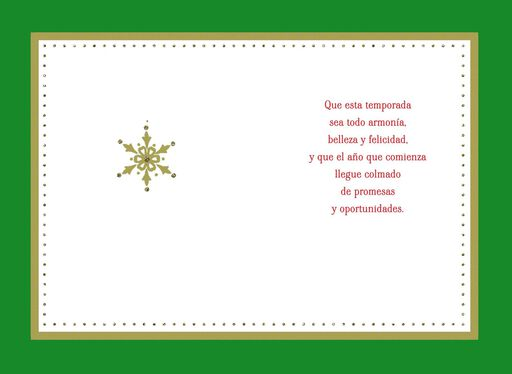 Spanish christmas card sayings best celebration day spanish christmas card phrases christmas lights card and decore m4hsunfo