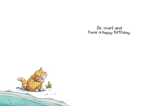 Cat Baptism Funny Birthday Card,