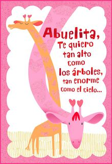 Now & Forever Spanish-Language Valentine's Day Card for Grandma,