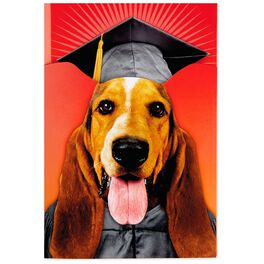 Dog Pop-Up Musical Graduation Card, , large