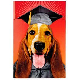Dog Pop-Up Musical Graduation Card, , large