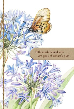 Marjolein Bastin Butterfly on Allium Encouragement Card