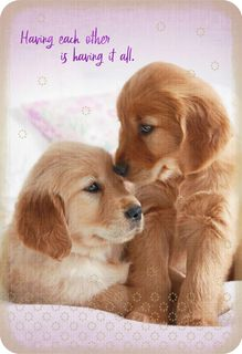 Having It All Two Puppy Dogs Romantic Love Card,