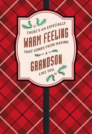 A Grandson Like You Christmas Card