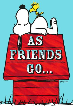 Peanuts® Snoopy Hug Pop Up Goodbye Card