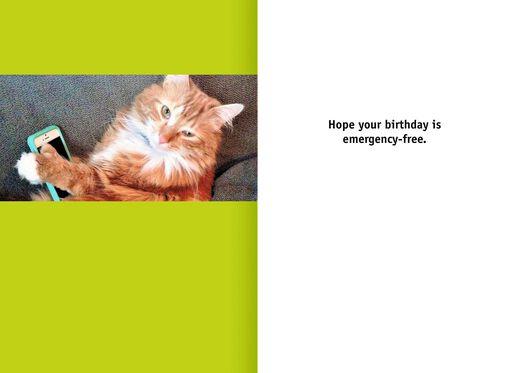 Tech Savvy Cat Funny Birthday Card,
