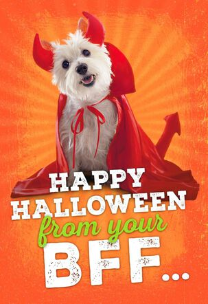 Best Furry Friend Halloween Card