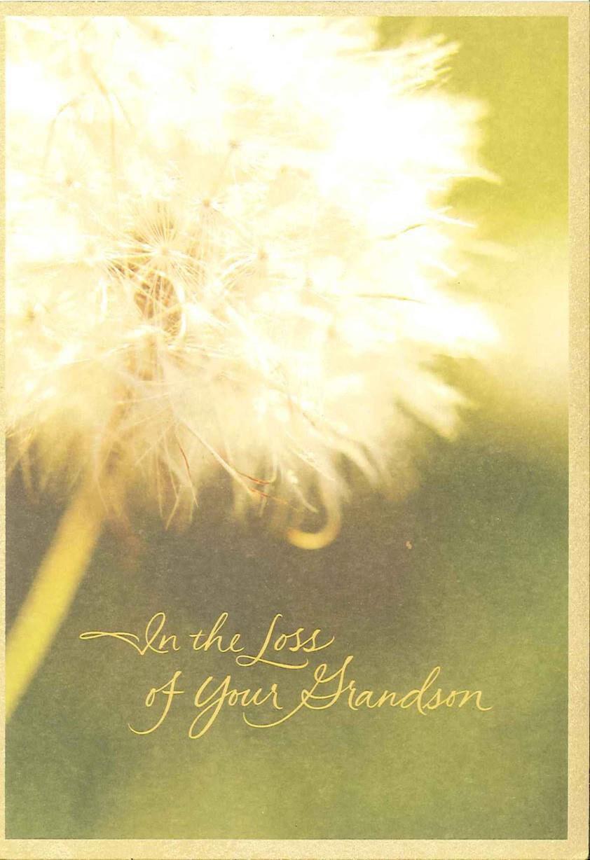 Dandelion loss of grandson sympathy card greeting cards hallmark kristyandbryce Choice Image