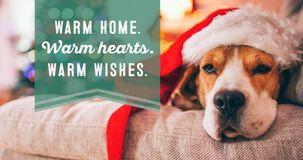 Santa Dog Money Holder Christmas Card