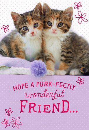 Purr-fectly Wonderful Kittens Birthday Card for Friend