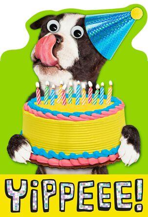 YIPPEEE! Dog Birthday Card