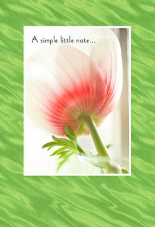 Tulip in Vase Photo Mother's Day Card,
