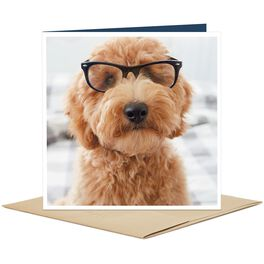 Dog Wearing Glasses Blank Card, , large