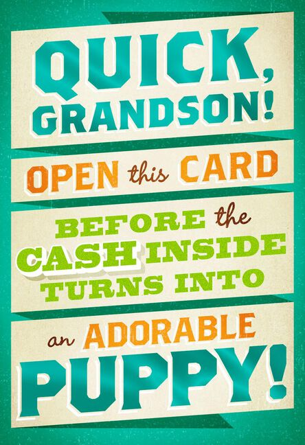 Money Or Puppy Funny Birthday Card For Grandson Greeting Cards