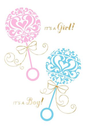 Rattles New Baby Twins Girl and Boy Card