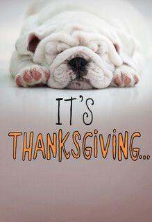 Eat, Nap, Repeat Thanksgiving Card,
