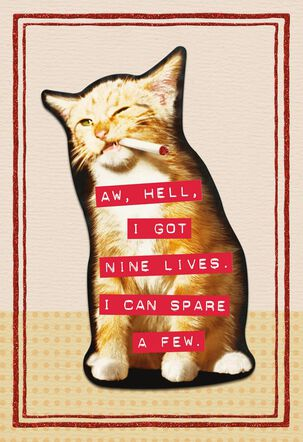 Nine Lives Funny Birthday Card