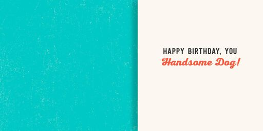 Handsome Dog Musical Birthday Card,
