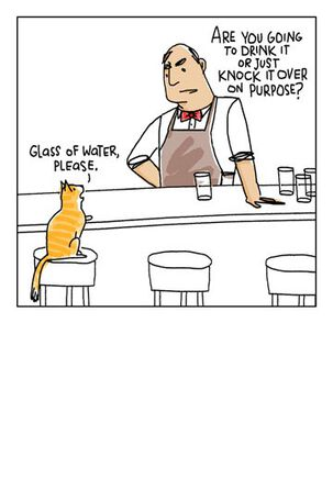 Cat in a Bar Blank Card
