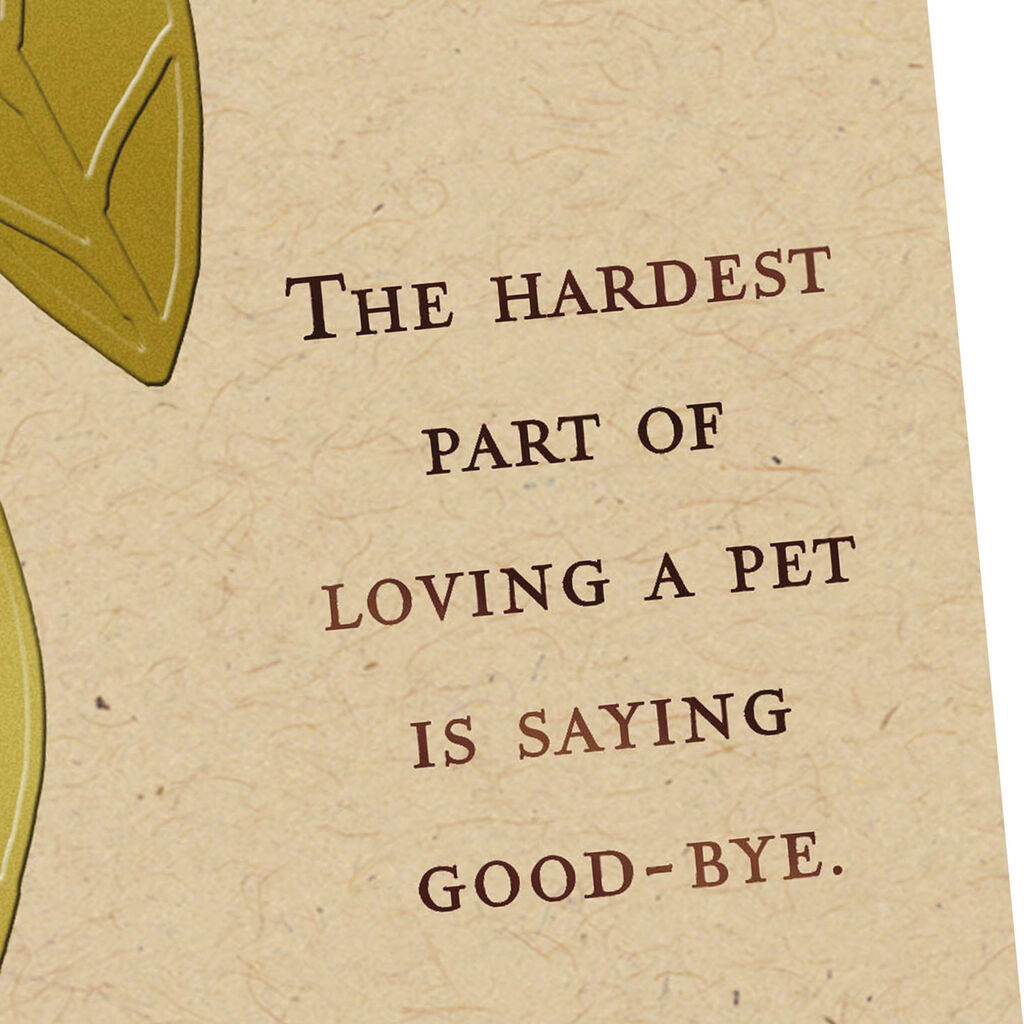 Loss Of Pet >> Saying Good Bye Sympathy Card For Loss Of Pet