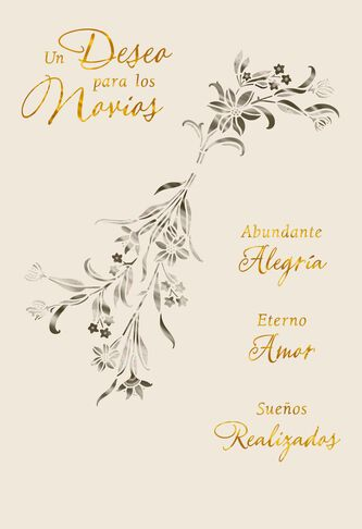 Wishes For The Newlyweds Spanish Language Wedding Card