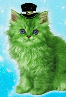 Green Leprechaun Cat Funny St. Patrick's Day Card,
