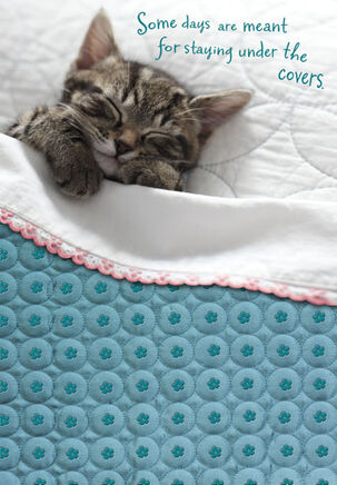 Snuggle Kitty Get Well Card