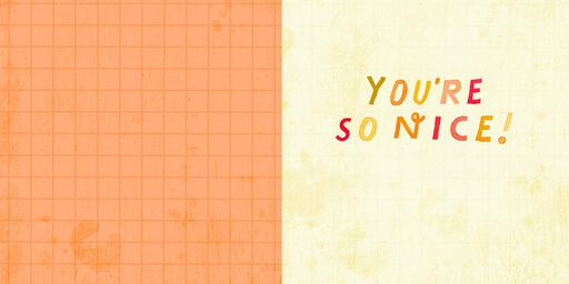 You're So Nice Thank You Card,