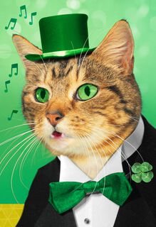 Irish Cat St. Patrick's Day Sound Card,