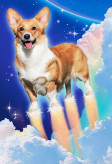 Full Throttle Cosmic Pooch Funny Birthday Card,