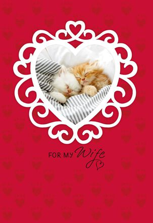 Cute Kittens Valentine's Day Card for Wife