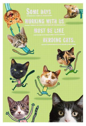 Herding Cats Administrative Professionals Day Card