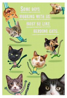 Herding Cats Administrative Professionals Day Card,