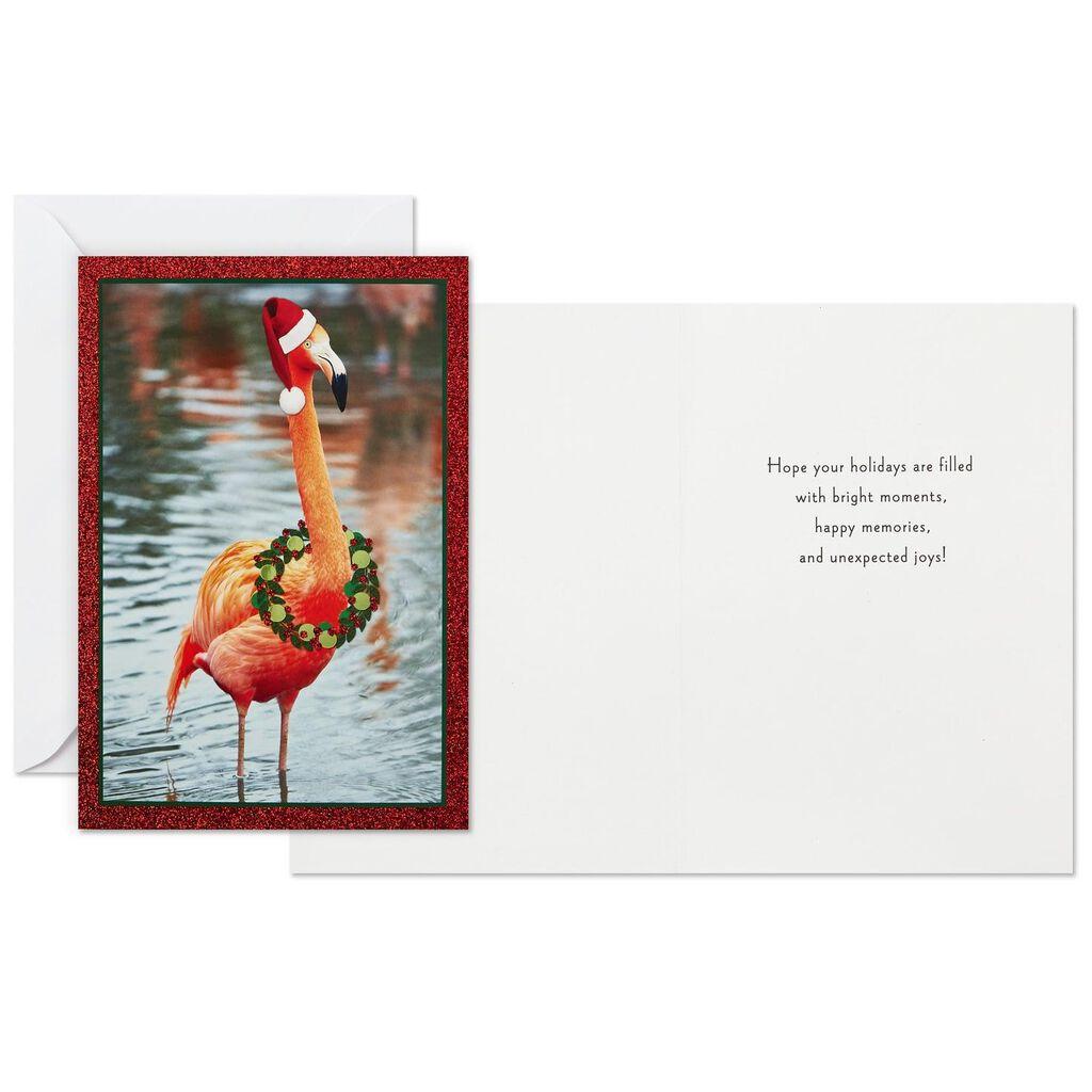 Flamingo Christmas Cards.Christmas Flamingo Christmas Cards Box Of 16