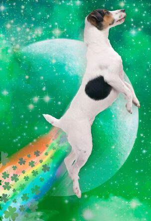 Dog Farting Shamrocks Funny St. Patrick's Day Card