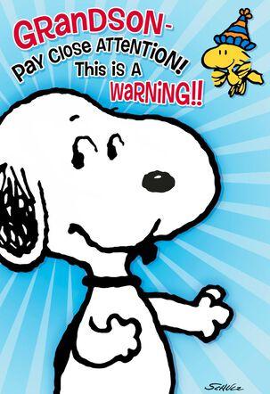 Peanuts® Snoopy Hug Attack Birthday Card for Grandson